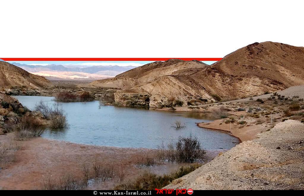 מאגר נקרות הניזון מימי נחל נקרות והשיטפונות בדפנות הקניון באזור מכתש רמון | צילום: תומר אריאל | עיבוד ממחושב: שולי סונגו©