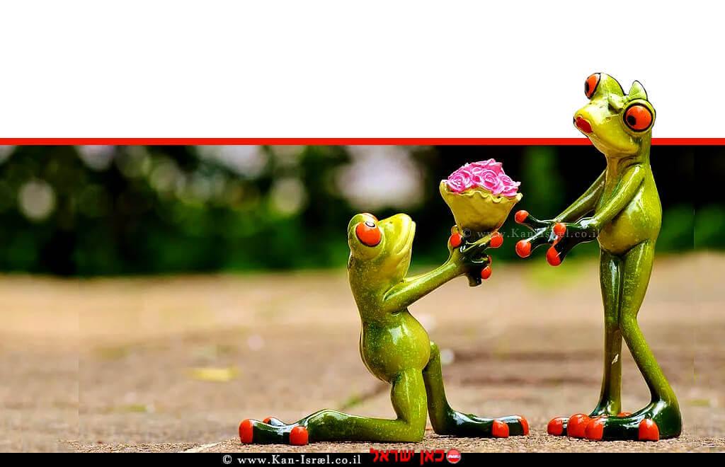איך הפכו צפרדעים לנסיכים משרד החקלאות, מציג: דבר אלי בפרחים ב… 'יום האהבה הבינלאומי'   צילום: pixabay.com   עיבוד ממחושב: שולי סונגו©
