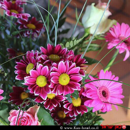 פרחים - המתנה ל'יום האהבה'   צילום: pixabay.com   עיבוד ממחושב: שולי סונגו©