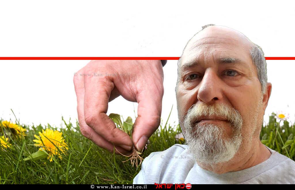 ראובן אורן, מומחה בגינון אורגני   רקע: אישה מְנַכֶּשֶׁת עשבים מזיקים ומנקה זרדים ישנים ונבוּלים בגינה   עיבוד צילום ממחושב: שולי סונגו©