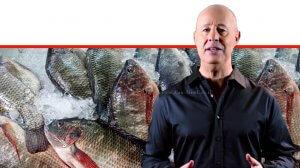 צחי הנגבי שר החקלאות, ברקע: דגים מיבוא למאכל | עיבוד צילום: שולי סונגו ©