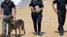 שוטרי משטרת ישראל בסיור בחוף הים | צילום: דוברות המשטרה | עיבוד צילום: שולי סונגו ©