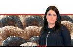 פאולינה סונגו ברקע: בייגלה אמריקאי | עיבוד צילום: שולי סונגו ©