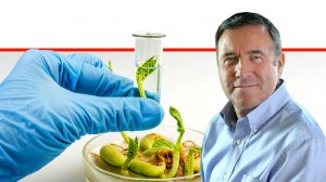 דר' נחום איצקוביץ, מנכל משרד החקלאות ופיתוח הכפרברקע: מקום עבודה במעבדה לבדיקת ביוטכנולוגיה | עיבוד צילום: שולי סונגו ©