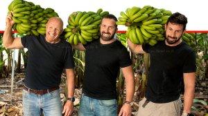 יאיר ברק וישראל אבני מגדלי בננות מושב גבע כרמל | צילום: מעין עופר | עיבוד צילום: שולי סונגו ©