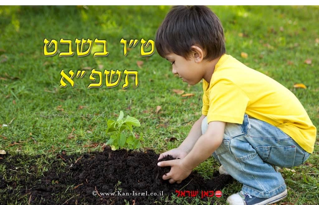 A-ChildPlantedOnTuBShvat2021_1024x660ki_27-01-21_01-1.jpg