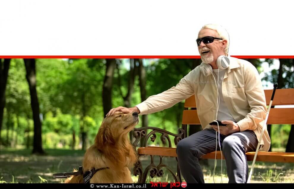 אדם עיוור עם 'כלב נחייה' - הלכה איסלמית - עם גישה חיובית כלפי עיוור עם כלבי נחייה |עיבוד צילום: שולי סונגו ©