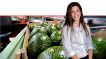 לירון ברזילי, מנהלת שרשרת האספקה של חברת חקלאי גרנות ברקע: פרי אבוקדו | צילום: אילן לופו | עיבוד צילום: שולי סונגו ©