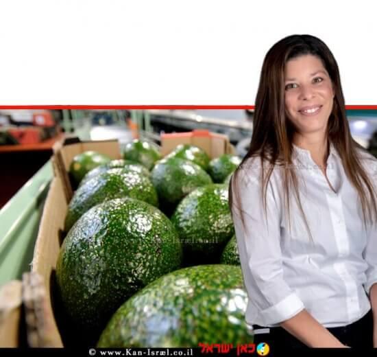 לירון ברזילי, מנהלת שרשרת האספקה של חברת חקלאי גרנות ברקע: פרי אבוקדו   צילום: אילן לופו   עיבוד צילום: שולי סונגו ©