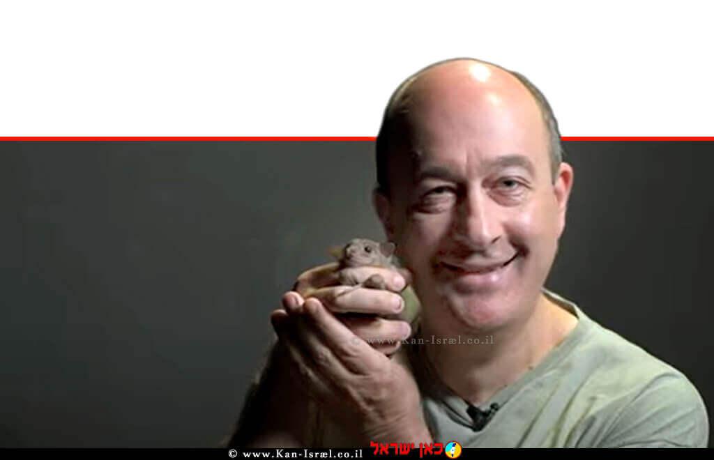 פרופ' נחום אולנובסקי מהמחלקה לנוירוביולוגיה במכון ויצמן עם עטלף פירות | עיבוד צילום: שולי סונגו ©