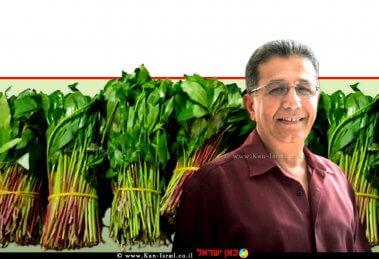 פרופ' עבד גרה, מנהל השירותים להגנת הצומח ולביקורת במשרד החקלאות ברקע: ניסיון לייצוא לא חוקי של גת במשלוח בזיליקום שסוּכל |עיבוד צילום: שולי סונגו ©