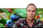 דר' עומר קראין, חוקר בכיר ממחקר ופיתוח צפון -מיגל' של החברה לפיתוח הגליל, תוצאות מחקרים לאקלום זני אוכמניות | צילום: מכון המחקר מיגל |עיבוד צילום: שולי סונגו ©
