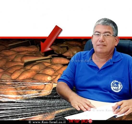 רואי קליגר מנהל היחידה המרכזית לאכיפה וחקירות של משרד החקלאות ברקע תפיסת משטחי בטטות |עיבוד צילום: שולי סונגו ©
